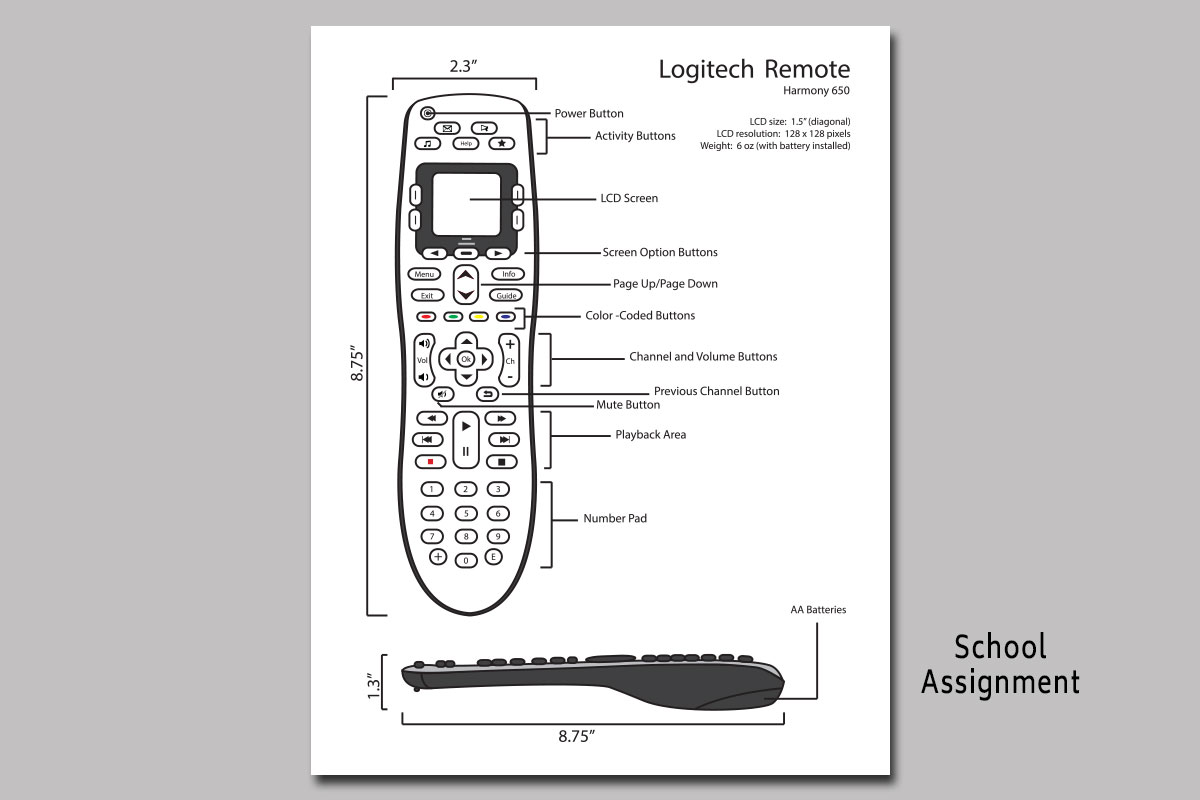 Remote Instruction Manule Graphic/School Project